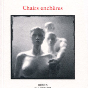 Chairs_encheres